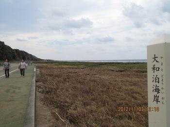 久米島-013.jpg