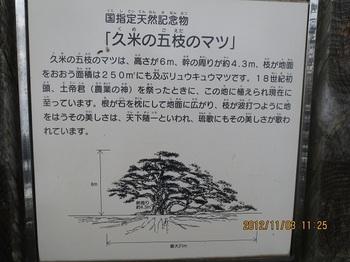 久米島-6.jpg