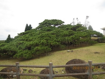 久米島-7.jpg