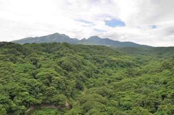 八ヶ岳-3.jpg