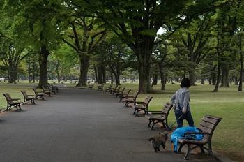 散歩-5.jpg